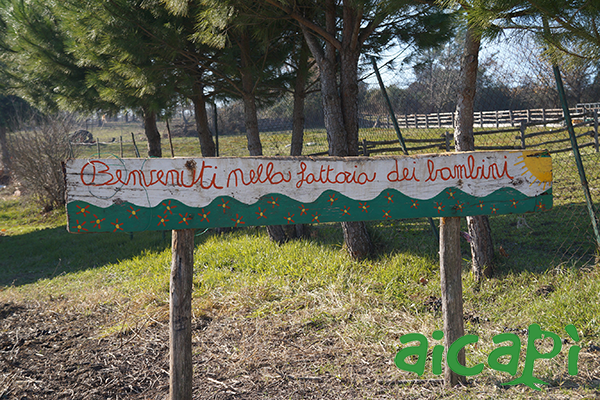 fattoria-selvanova_fattoria-didattica